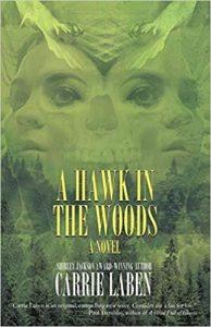 hawk in woods